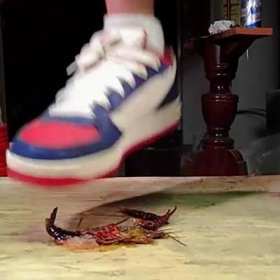 Shawn Iverson Craw Floor